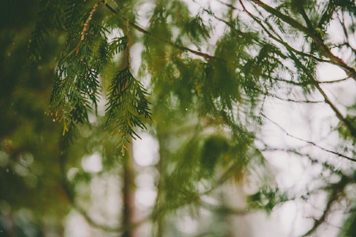 CT4_PhotosetCarsonDavisBrown_CT4-7666